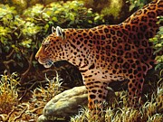 Leopard Painting Prints - On The Prowl Print by Crista Forest