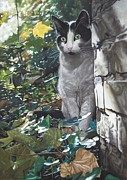 Cat Pastels - On the Prowl by Karie-Ann Cooper