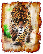 Cheetah Mixed Media Framed Prints - On the Prowl Framed Print by Mark Compton