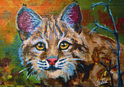 Bobcat Painting Prints - On the Prowl Print by Teshia Art