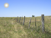 Old Fence Posts Acrylic Prints - On The Range Acrylic Print by Daniel Hagerman