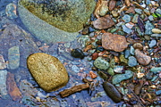 Pebbles Prints - On the Rocks Print by Heather Applegate