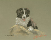 Cute Dog Pastels - On the rocks by John Silver