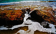Bubbly Prints - On the Rocks Print by Tracey McQuain
