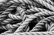 Ropes Prints - On the Ropes 2 Print by Paul Huchton
