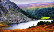 Lush Vegetation Prints - On the Shore of Lough Tay. Wicklow. Ireland Print by Jenny Rainbow