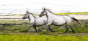 Horse Drawings Prints - On The Trail Print by Steve McKinzie