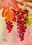 Grapevines Paintings - On the Vine by Nancy Jolley