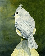 Titmouse Paintings - On Top of the World by Brett Winn