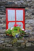 Joe Cashin - Once a window