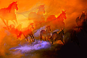 Wild Mustangs Posters - Once There Were Many Poster by Robert Albrecht