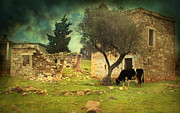 Mediterranean Landscape Art - Once upon a time in Phokaia  by Taylan Soyturk