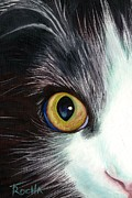 Tammy McEntire - One Eyed Cat