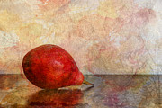 Pear Art Prints - One Print by Heidi Smith