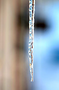 Release Framed Prints - One icicle Framed Print by Tommy Hammarsten