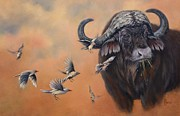 Cape Buffalo Paintings - One Last Summer by Cynthia House