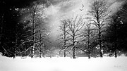 Winter Snow Landscape Posters - One Night In November Poster by Bob Orsillo