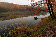 Goldilocks Metal Prints - One of the Worcester Ponds Metal Print by Charles Kozierok