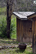 Outhouses Photos - One Seater by Juls Adams