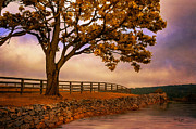 Fall Landscape Digital Art - One Tree Hill by Lois Bryan