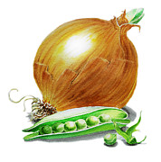 Onion Paintings - Onion and Peas by Irina Sztukowski