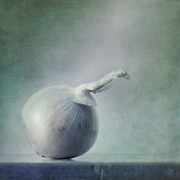 Blues Photo Posters - Onion Poster by Priska Wettstein