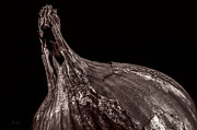 Eat Photo Prints - Onion Skin Print by Bob Orsillo