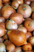 Ingredient Framed Prints - Onions Framed Print by Carlos Caetano