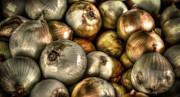 David Morefield - Onions