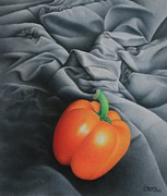 Color Pencil Drawings - Only Orange by Pamela Clements