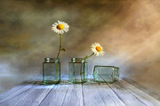 Daisy Digital Art Metal Prints - Only two Metal Print by Veikko Suikkanen