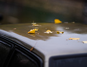 Cabin Window Photos - Open Air Parking 2 - Featured 3 by Alexander Senin