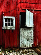 Red Barns Metal Prints - Open Barn Door Metal Print by Julie Dant