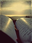 Sunshine Pyrography Prints - Open Bible Print by Anne Macdonald