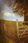 Fall Grass Prints - Open Country Gate Print by Christopher and Amanda Elwell
