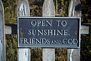 Words Prints - Open to sunshine sign Print by Garry Gay