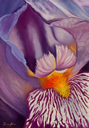 Framed Pastels Originals - Openings by Dana Kern