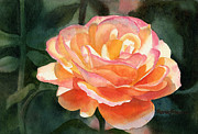 Orange Art Posters - Orange and Gold Rose Poster by Sharon Freeman