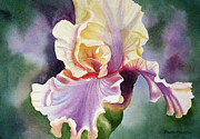 Sharon Freeman - Orange and Purple Iris