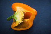 Dark Grey Posters - Orange bell pepper blue texture Poster by Matthias Hauser