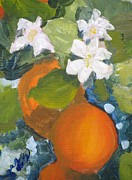Susan E Jones - Orange Blossom Special