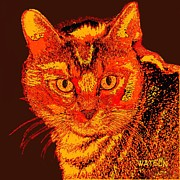 Cat Prints Digital Art Framed Prints - Orange Cat Framed Print by Marlene Watson