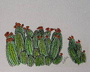Desert Drawings Prints - Orange Claret Cups Print by Marcia Weller-Wenbert