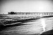 America Photography Framed Prints - Orange County California Picture of Balboa Pier  Framed Print by Paul Velgos