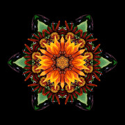 Orange Gazania IIi Flower Mandala Print by David J Bookbinder