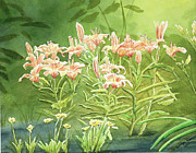 Botanical Posters - Orange Lillies In Morning Poster by Kathryn Duncan