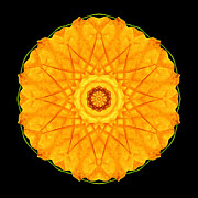 Orange Nasturtium Flower Mandala Print by David J Bookbinder