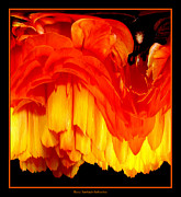 Avant Garde Photograph Acrylic Prints - Orange Ranunculus Abstract Acrylic Print by Rose Santuci-Sofranko
