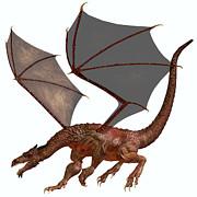 Corey Ford - Orange Red Dragon