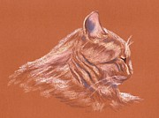 Cat Portraits Pastels Prints - Orange Tabby Cat in Profile Print by MM Anderson